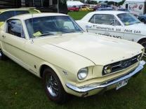 ' 66 GT & 64 Pace car