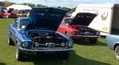 '67 GT & Rare T5