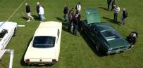 '66 GT & '67 Fastback