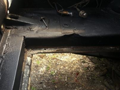 trunk area
