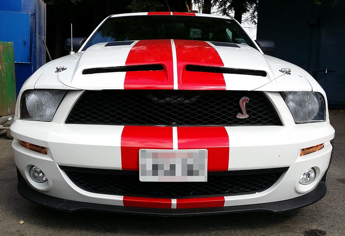 The Custom Look Mustang Maniac