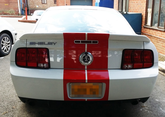 Shelbyredstripe5