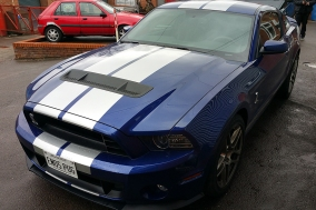 14Shelby6