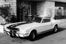 Shelby10