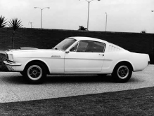 Shelby9