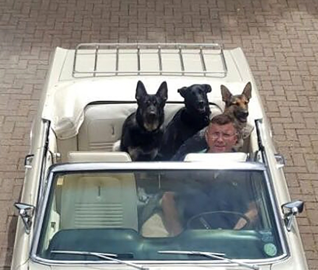 convert&dogs
