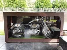 Harley4