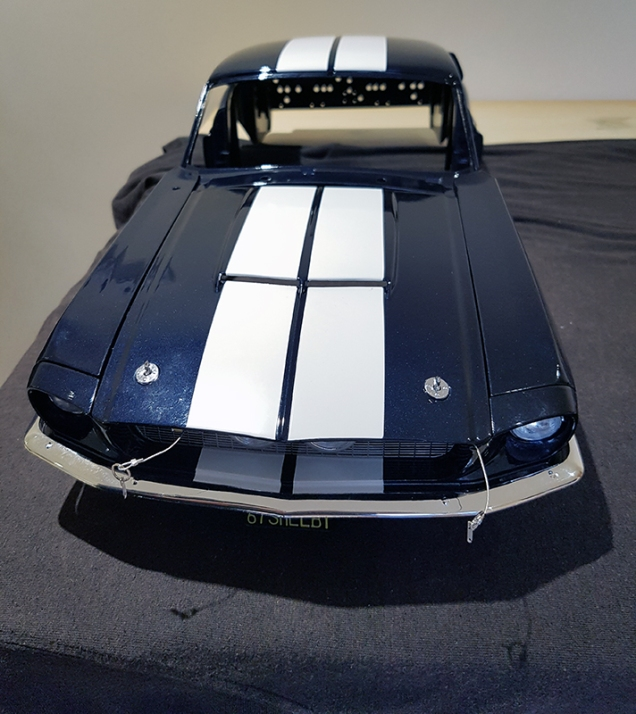 shelby1-8th-340