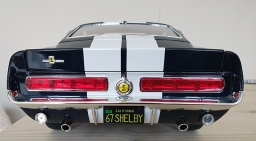 shelby1-8th-435